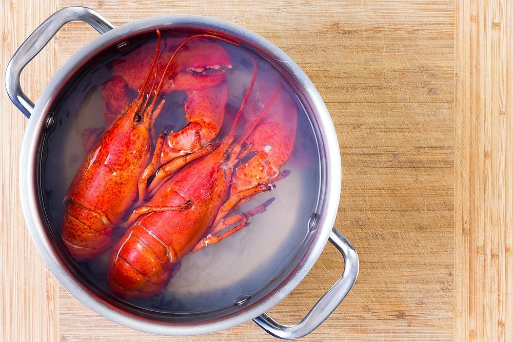 Astice bollito: la ricetta per cucinarlo a casa.