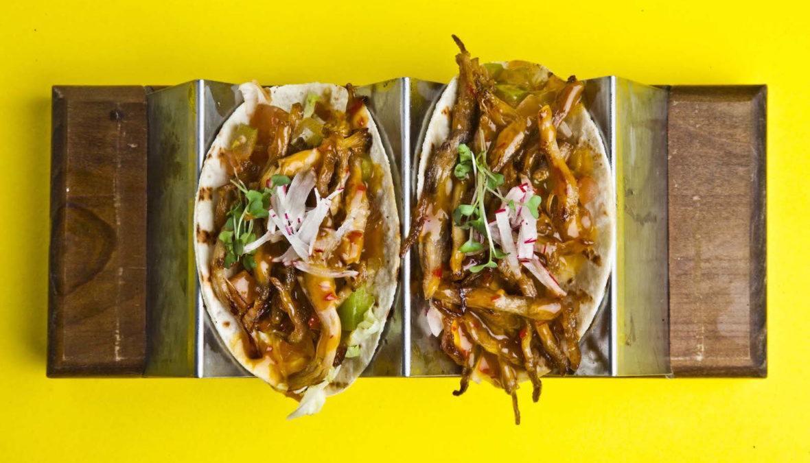 Voglia di ristorante messicano a Roma? Tacos e Nachos da TED!
